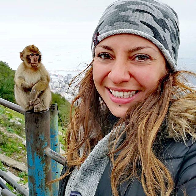 Rocky Monkey Gibraltar Tours